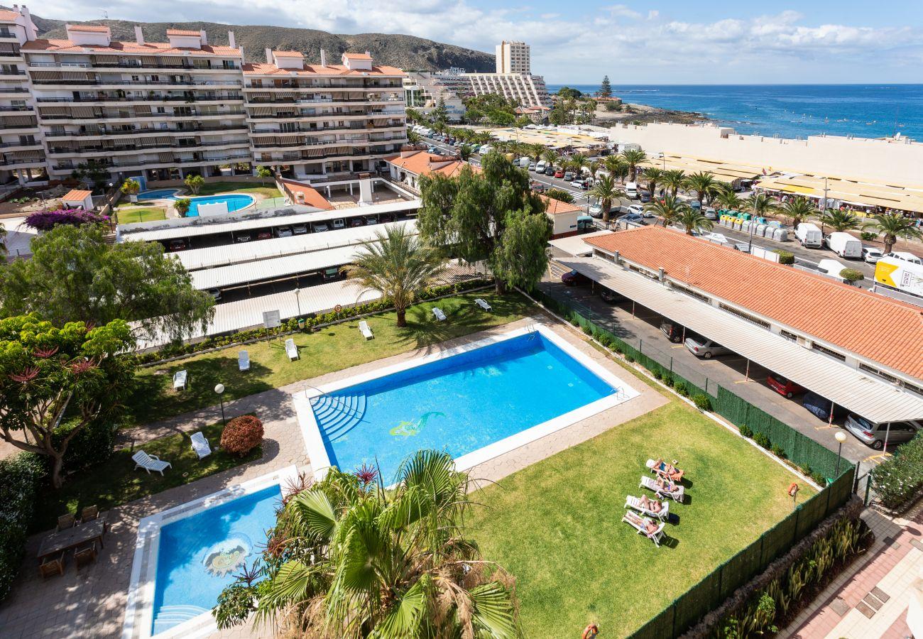Apartment in Arona - Home2Book Beautiful Apartment Los Cristianos Pool & Wifi