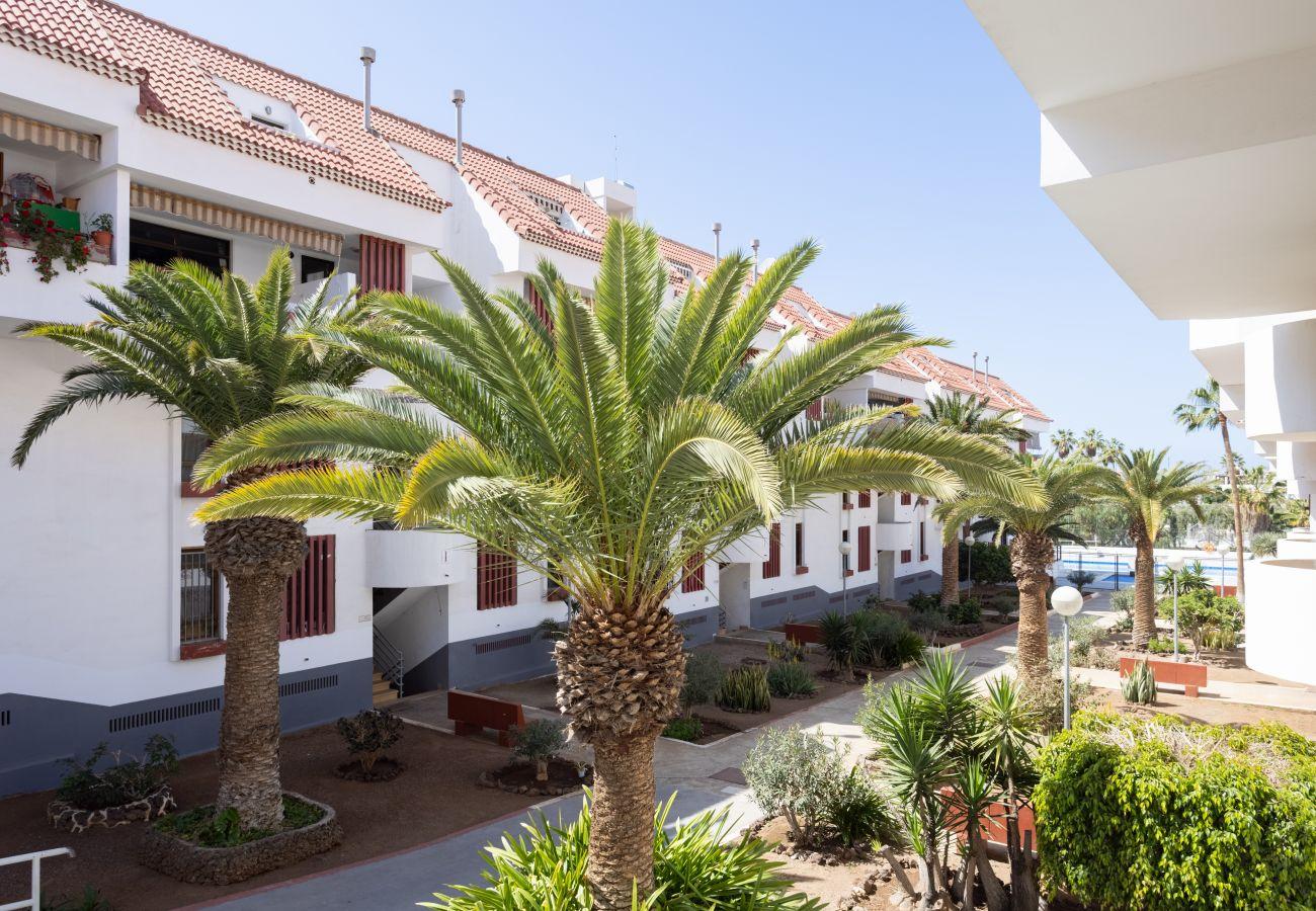 Apartment in Arona - Home2Book Las Américas Apartment Terrace & Pool