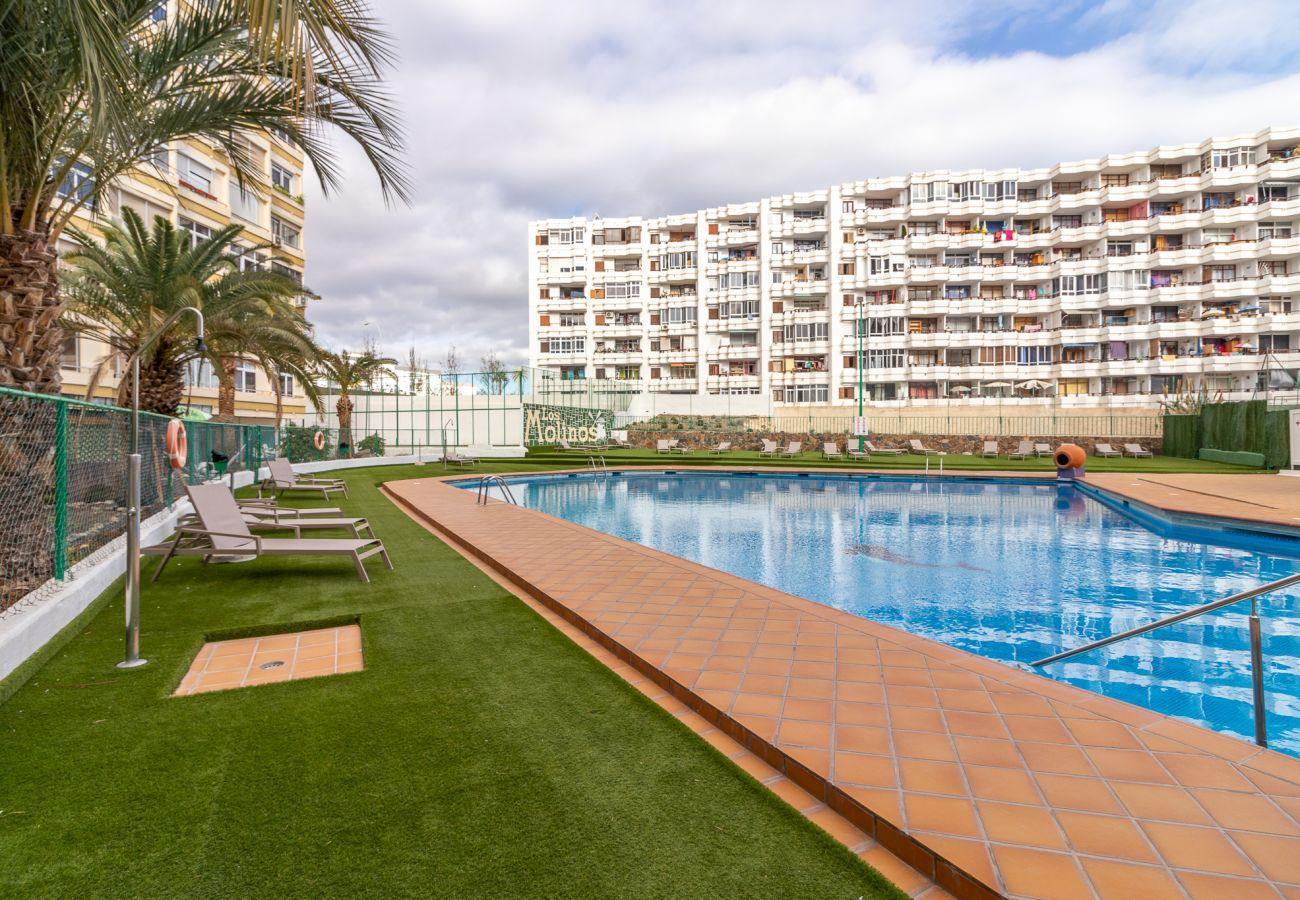 Apartment in San Bartolomé de Tirajana - Home2Book Desing Apartment Playa del Inglés, Pool & Wifi